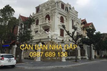 Chính chủ cần bán biệt thự khu ĐTM Trung Yên, DT: 220m2 x 4 tầng trước mặt vườn hoa, LH: 0987689138