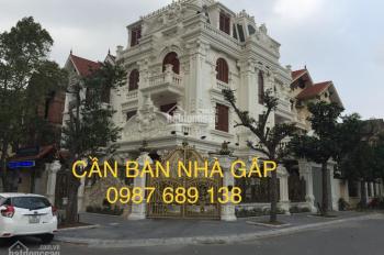 Chính chủ bán 02 căn biệt thự Yên Hoà DT: 155m2 & 268m2 hoàn thiện đẹp 4 tầng NT cao cấp 0987689138