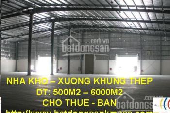Cho thuê kho 10000 m2 - 25000 m2 Hà Nội