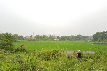 Cần bán 4200m2 đất sinh thái nhà vườn tại Đồng Chanh, Lương Sơn, Hòa Bình
