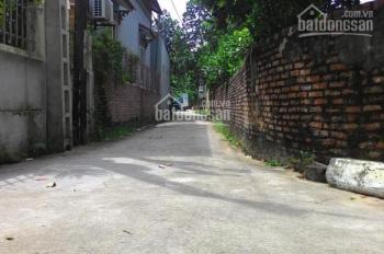 Chính chủ cần bán 50m2 đất ô tô thoải mái tại Tân Trại, Phú Cường, giá rẻ nhất thị trường 8,5tr/m2