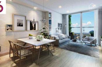 Amber Riverside hút khách và giới đầu tư vì thiết kế vượt trội và mật độ thấp hơn Times City