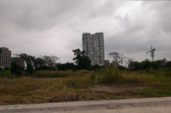Định cư cần bán gấp đất ở MT Lũy Bán Bích, Quận Tân Phú, SHR, XDTD, 120m2, 0767859501