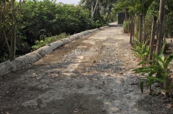Nhượng vườn cây ăn trái tại đường Long Phước, P. Long Phước, Q.9, diện tích công nhận: 3.515m2