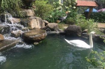 Bán đất chính chủ tại Bàu Cạn, Long Thành, chỉ 165tr, SHR, LH: 0886840078
