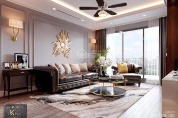 Thông tin cần biết khi mua căn hộ ở dự án Amber trong Times City, dự án hot nhất khu vực Minh Khai