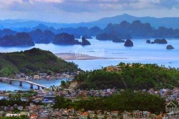 Mở bán đất nền dự án Phương Đông, Vân Đồn, nền liền kề, biệt thự đẹp nhất
