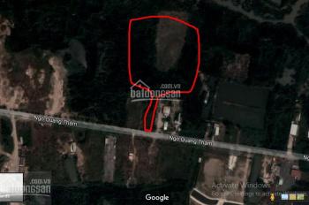Bán 2000m2 đất làm nhà vườn mặt tiền Long Thới, Nhơn Đức, ngay quốc tế Mỹ, giá 6 tỷ