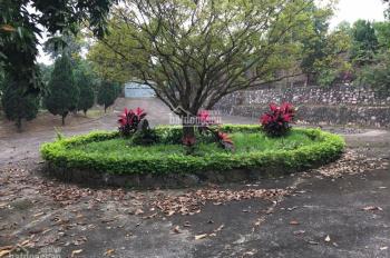 Cần bán 5000m2 nhà đất nghỉ dưỡng đã có sẵn biệt thự tại Hòa Sơn, Lương Sơn, Hòa Bình