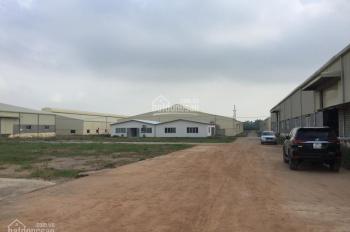 Đất làm nhà xưởng An Điền, An Tây, Bến Cát, mặt tiền đường nhựa, đang kẹt tiền bán Gấp, bán Lỗ