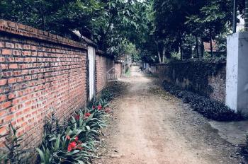Cần bán 185m2 đất tại thôn Miễu, Tiến Xuân, gần Đại Lộ Thăng Long, cách ĐH quốc Gia Hà Nội 400m