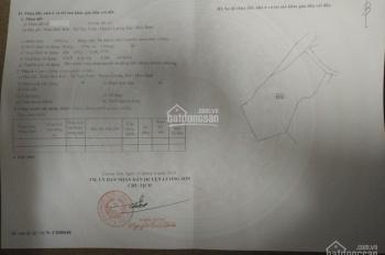 Bán 4000m2 đất sổ đỏ, huyện Lương Sơn, Hòa Bình