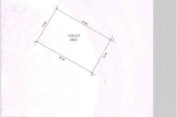 Bán gấp lô đất đấu giá Tân Triều cạnh Viện Bỏng, DT 240m2, mặt tiền 12m, đường 13m, H. TB, 62tr/m2