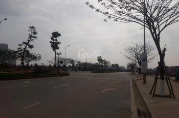 Cần bán gấp biệt thự mặt hồ Dương Nội