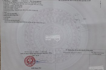 Bán đất đấu giá Nguyễn Du, Thường Tín, Tp Hà Nội