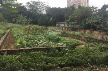 Chính chủ cho thuê nhà xưởng - Láng Hòa Lạc - Hà Nội