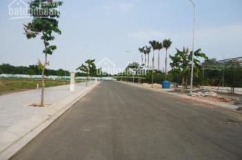 Bán đất KDC An Hạ Lotus - H. Bình chánh, Hồ Chí Minh 925 triệu