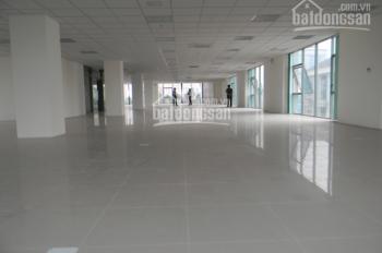 Cho thuê nhà hẻm xe hơi Trần Bình Trọng gần An Dương Vương 6m x 16m, trệt, 2 lầu, sân thượng