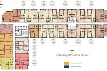 Chính chủ bán gấp CH Roman Plaza tòa B1 CH 19-19 (77m2) và tầng 18-03 (103m2) giá rẻ 26tr/m2