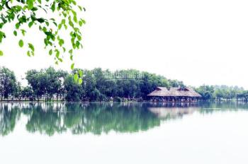 Chính chủ bán gấp đất lô A6 khu dân cư Cát Tường Phú Sinh, ngay hồ sinh thái, 690 triệu. 0967338867
