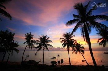Cần bán vài lô đất tái định cư Gành Dầu, thế núi cao, ra biển chỉ 5' đất ở 100%, LH 0938.819.711