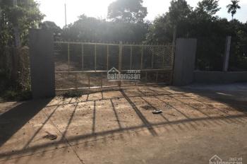 Bán vườn sầu riêng, bưởi, Long Khánh, Đồng Nai, 8800m2, giá 5 tỷ, TL nhẹ