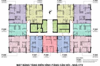Chính chủ bán căn 09 và 10 tòa A10 Nam Trung Yên, giá gốc: 27,1tr/m2. LH: 0983 262 899