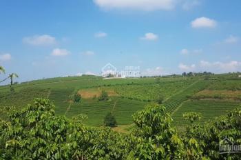Bán đất chính chủ thích hợp nghỉ dưỡng 490tr/ 1 nền 500m2, cách trung tâm TP. Bảo Lộc 5 km