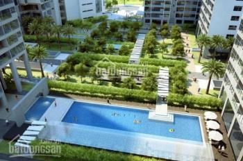 Bán căn hộ 114m2, 128m2, 130m2, 144m, 168m2 và 302m2 Mandarin Garden Hòa Phát. Giá hợp lý