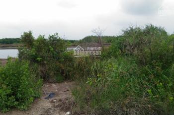 Bán đất Nhơn Trạch, Đồng Nai, giá rẻ 500 ngàn/m2, an toàn