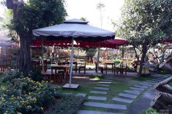 Cần sang nhượng lại quán cà phê tại quận Gò Vấp