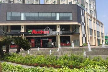 Định cư NN nên bán gấp CH Summer, Tân Hòa Đông Q6, 62m2 giá từ 2.2 tỷ, đã có SH 0938295519. Giao đồ