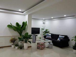 Chính chủ cần bán căn trệt penthouse Hoàng Anh Gia Lai 1, nội thất đầy đủ, Quận 7, TPHCM