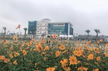 Đất nền Vsip Bắc Ninh rẻ nhất khu vực Từ Sơn, Bắc Ninh