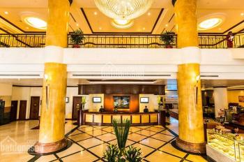 Nhà làm khách sạn, CHDV mặt phố Nguyễn Du siêu phẩm Hoàn Kiếm