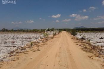 Bán đất vị trí 2 đường Hùng Vương, TX Lagi, Bình Thuận, diện tích 2ha, giá 8 tỷ