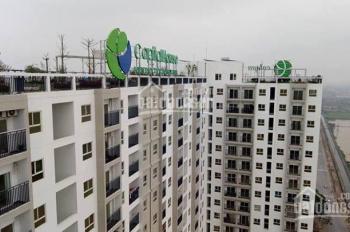 Ecohome Phúc Lợi, Long Biên nhận nhà ở ngay, chiết khấu 10%, 20tr LS 0% 12 tháng, LH 0969550918
