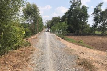 Bán đất công Đức Hòa giá rẻ, 1250m2 đường TL Sa Bà, giá 980 triệu