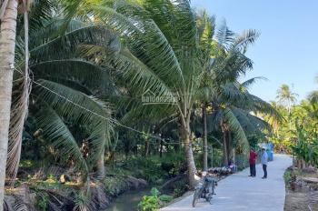 Chính chủ bán đất biệt thự vườn dâu An Phước, Châu Thành, Bến Tre