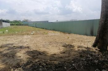Cần cho thuê đất đường số 16 khu dân cư Cồn Khương, đã làm nền, DT: 10m x 25.5m, giá 7 triệu/th