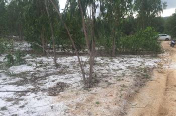 Bán lô đất 1 hecta tại xã Xuân Lộc, thị xã Sông Cầu. Sổ đỏ đầy đủ, giá 2,1 tỷ, có thương lượng