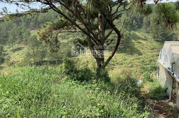 Cho thuê đất đường An Sơn, khu nghỉ dưỡng yên tĩnh, không gian thoáng Đà Lạt