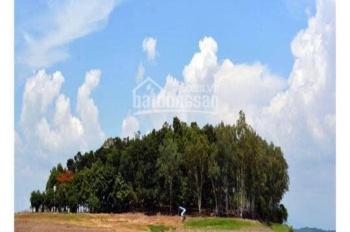Bán đất view Hồ Trị An, xã Thanh Bình, Trảng Bom