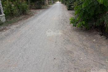 Bán gấp nền đất thổ 5x49m ấp Lộc Hưng, xã Lộc Giang