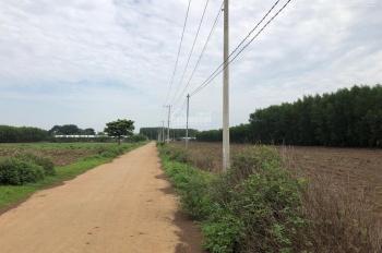 Chính chủ bán đất gần sân bay Long Thành, cao tốc Long Thành Dầu Giây