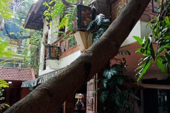 Bán gấp biệt thự nhà vườn Nguyễn Khoái, 596m2, 19 tỷ, Hai Bà Trưng