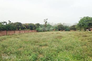 Cho thuê đất trang trại 5000m2 Lương Sơn, Hòa Bình