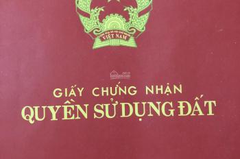 Bán đất Ngõ 28 Nguyên Hồng, DT 122m2, lô góc, kinh doanh, văn phòng, giá 184tr/ m2