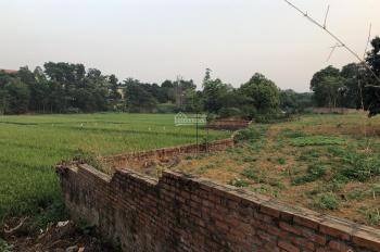 Nhượng qsd 3600m2 đất thổ cư tiên phân lô bán nền tại Thôn 7, xã Phú Cát, Quốc Oai