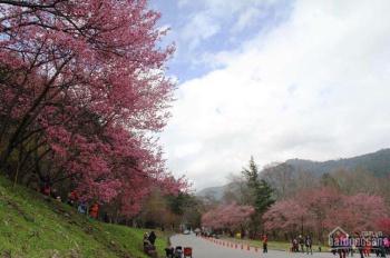 Rời xa nơi đô thị ồn ào, khói bụi để đến với thiên nhiên núi rừng tại Kai Village, Hòa Bình